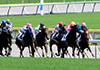 レースの記事イメージ